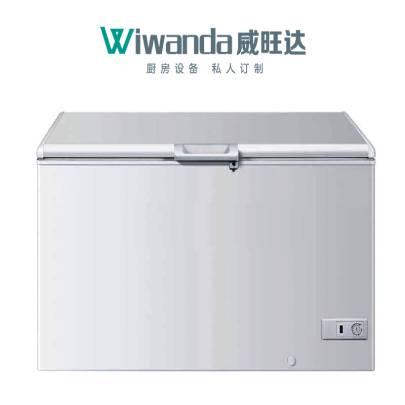 卧式冰柜 (2)